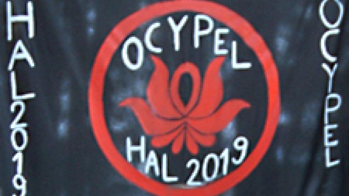Sztandar Harcerskiej Akcji Letniej 2019 w Ocyplu